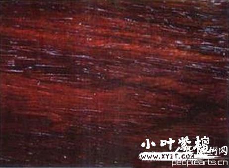 新紫檀木和老紫檀木鉴别